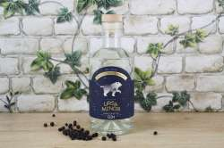 "Gin ""Ursa Minor"""